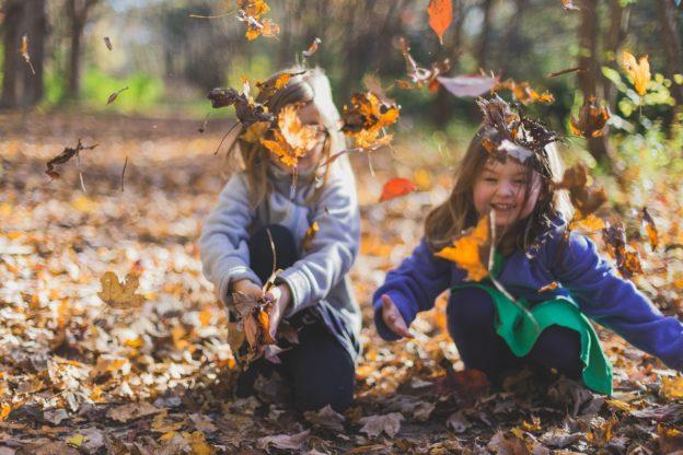 Børn leger med blade i skoven