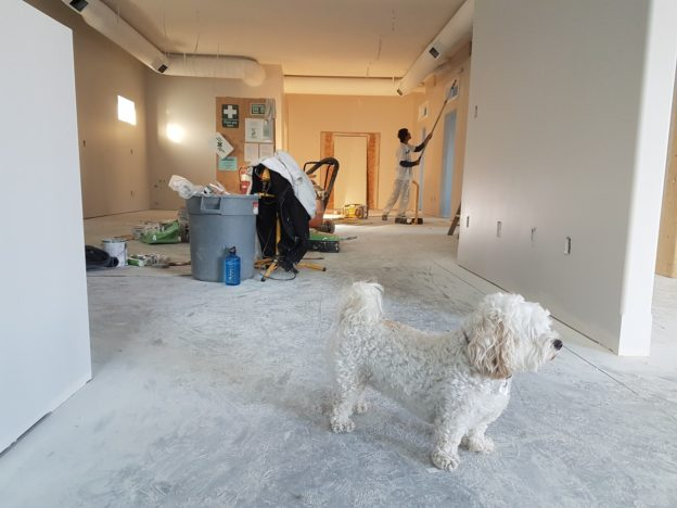 Renovation af hjem i gang